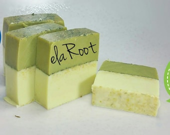 Botanical Shampoo and Cleansing Body Bar
