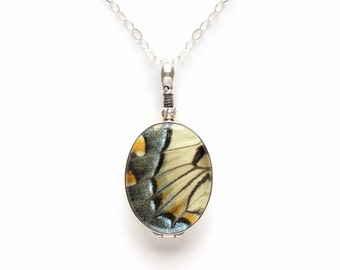 Real Butterfly Wing Jewelry with Tiger Swallowtail