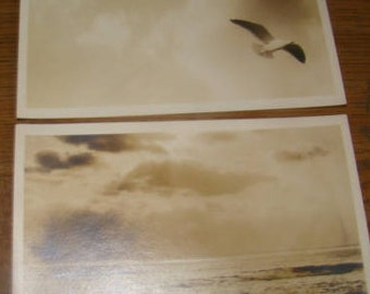 LAST CHANCE SALE 2 Vintage rppc of the beach and a Seagull