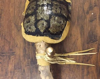 Turtle Shell Rattle Native American made