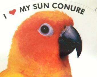 Sun Conure Parrot Exotic Bird Vinyl Decal Bumper Sticker