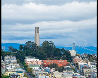 Telegraph Hill to Coit Tower - San Francisco photo - Fine art travel photography - Cityscape - blue, forest green, ivory