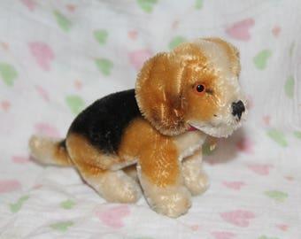 Sweet Steiff Dog - Biggie - With Tag!