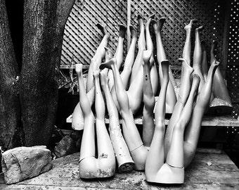 Legs Photograph, Mannequin Legs, Black and White - 8x10 fine art photograph