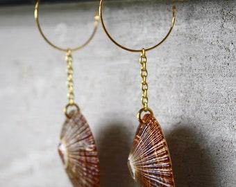 Opihi Shell Gold Hoop Earrings