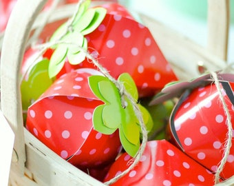 Strawberry Favor Boxes Summer Party Favors Birthday Favors Summer Barbecue 4th of July Favors Picnic Favors Summer Party Decorations