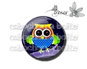 PA563 cabochons glasses, Retro, birds, owl, Owl, OWL manual
