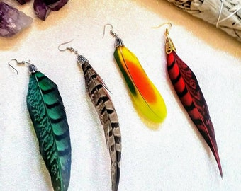 Pheasant and Parrot Feather Earrings - single and pairs available