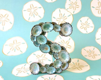 """Beach Decor - Seashell Letter with Natural Blue Green Limpet Shells  5"""" H - If ordering more than one, indicate letters in 'Note to Seller'"""
