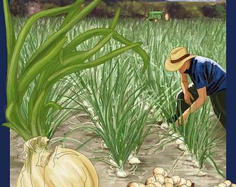 Vidalia, Georgia - Onion Field (Art Prints available in multiple sizes)