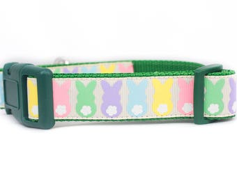 Easter Bunny Dog Collar - 1 inch wide Dog Collar - Easter dog collar- buckle or martingale collar - Spring dog collar - easter rabbit dog