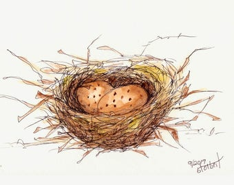 Bird Nest With Eggs Original Watercolor Art Painting Pen and Ink Watercolor Hand Painted