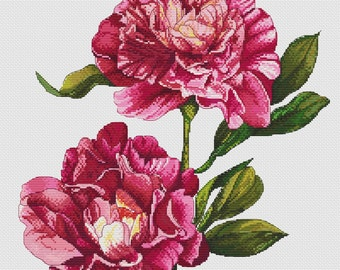 Cross stitch pattern, Peonies needlepoint, flowers embroidery