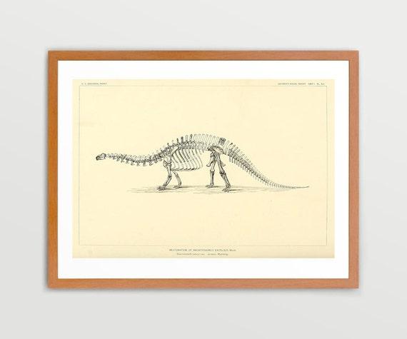Brontosaurus Dinosaur Illustration Vintage Prints Antique Nature Print Natural History Art