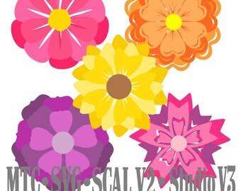 SVG Cut Files Flower Set 02 Multi Layered Bundle of 5 MTC SCAL Cricut Cameo Instant Download Cutting File
