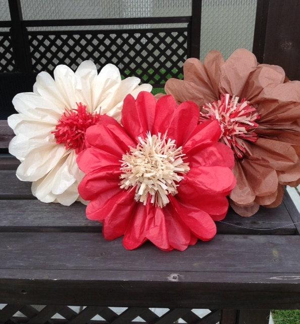 Set of 3 giants tissue paper flowers pom poms 2 in 1 zoom mightylinksfo