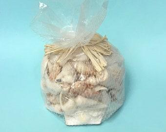 Seashells - Assorted White and Brown Natural Shells - bulk sea shells craft shells wedding bouquets coastal nautical
