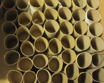 80 Empty Toilet Paper Rolls cardboard Tubes Toilet Paper tubes TP Rolls Bible School Projects Art Crafts Recycle Seed Starters Upcycling