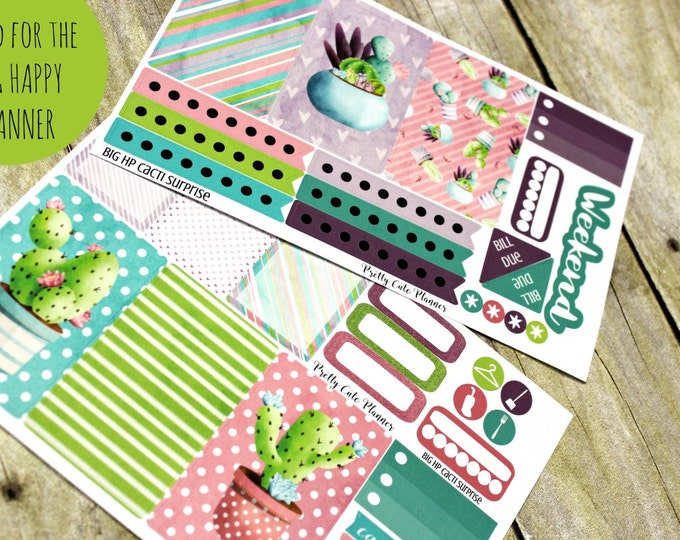 BIG Happy Planner Planner Stickers - Weekly Planner Sticker Set - Happy Planner - Day Designer - Functional stickers - Cacti Suprise sticker