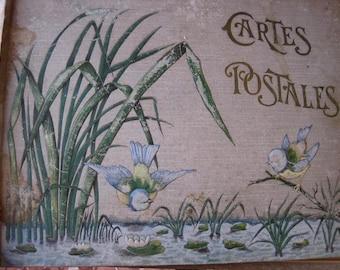 Vintage Post Card Album, French Cartes Postale, French Postcard Album, Art Nouveau Album, French Shabby Chic, French Antique, Antique Birds