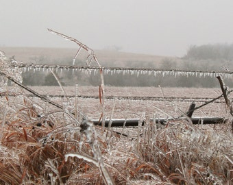 Cold and Icy Country fence