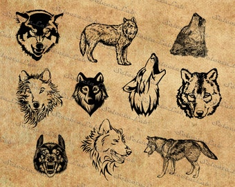Digital SVG PNG wolf, lycanthrope, wolf head, clipart, vector, silhouette, instant download