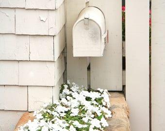 Mailbox Photo, White Mailbox Photo, Shabby Chic, Cottage Garden Photo, 5x7 Photo, 8x10 Photo, 11x14 Photo