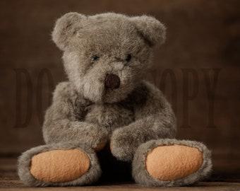 Teddy Bear Digital Backdrop