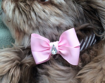 Dog or cat bow collar clip, dog accessories / dog bow / dog collar / pet accessories /dog bling / dog neckware / pet bow / cat accessories