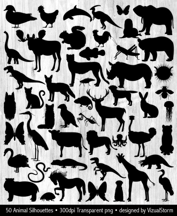 Animal Silhouette Clipart Graphics Bundle Wild Animal - Word doc invoice template download silhouette online store