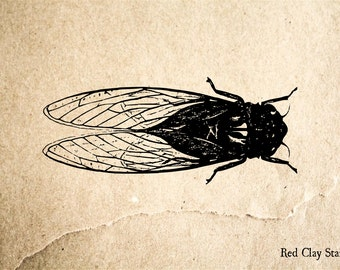 Cicada Vintage Rubber Stamp - 2 x 2 inches