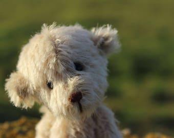 Little 'Syrup', Mohair Artist Bear, Handmade in Orkney, Scotland