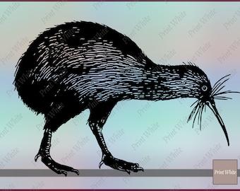 Kiwi Bird Svg Kiwi Bird Clipart Kiwi Bird Cutting Files Cricut Cut File Animal Svg Bird Svg Kiwi Silhouette Kiwi Bird Digital Stamp Png File