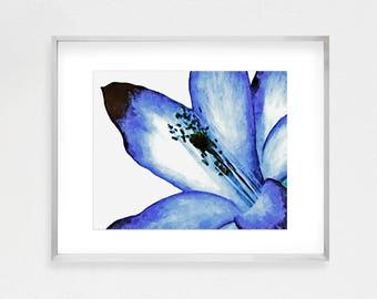 Plant Print, Blue Flower Poster, Botanical Poster, Botanical Wall Art, Watercolor Flower, Botanical Prints, Botanical Art, Flower Painting