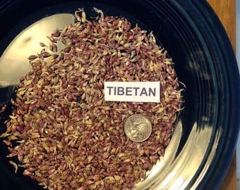 50+ TIBETAN Garlic Bulbils/seeds - Hardneck -Turban type - RARE Organically Grown