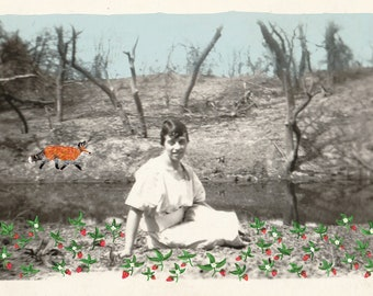 """Strawberry Fields Forever, early 1900s (8.5"""" x 11"""" Art Print)"""
