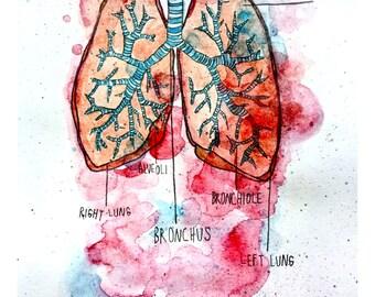 Lungs Print 8 x 5