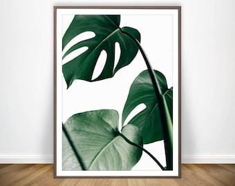 Tropical Art * Monstera Leaf Print Palm Leaf Poster Tropical Leaves Palm Tropical Wall Art Palm Poster Palm Tree Tropical Poster