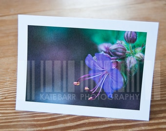 Purple Flower 2 Blank Greeting Card