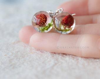 Strawberry earrings ⇷12mm⇸ Resin Dangle earring | Vegan earrings | Real fruit jewelry | Gift for vegan real Strawberry jewelry resin sphere