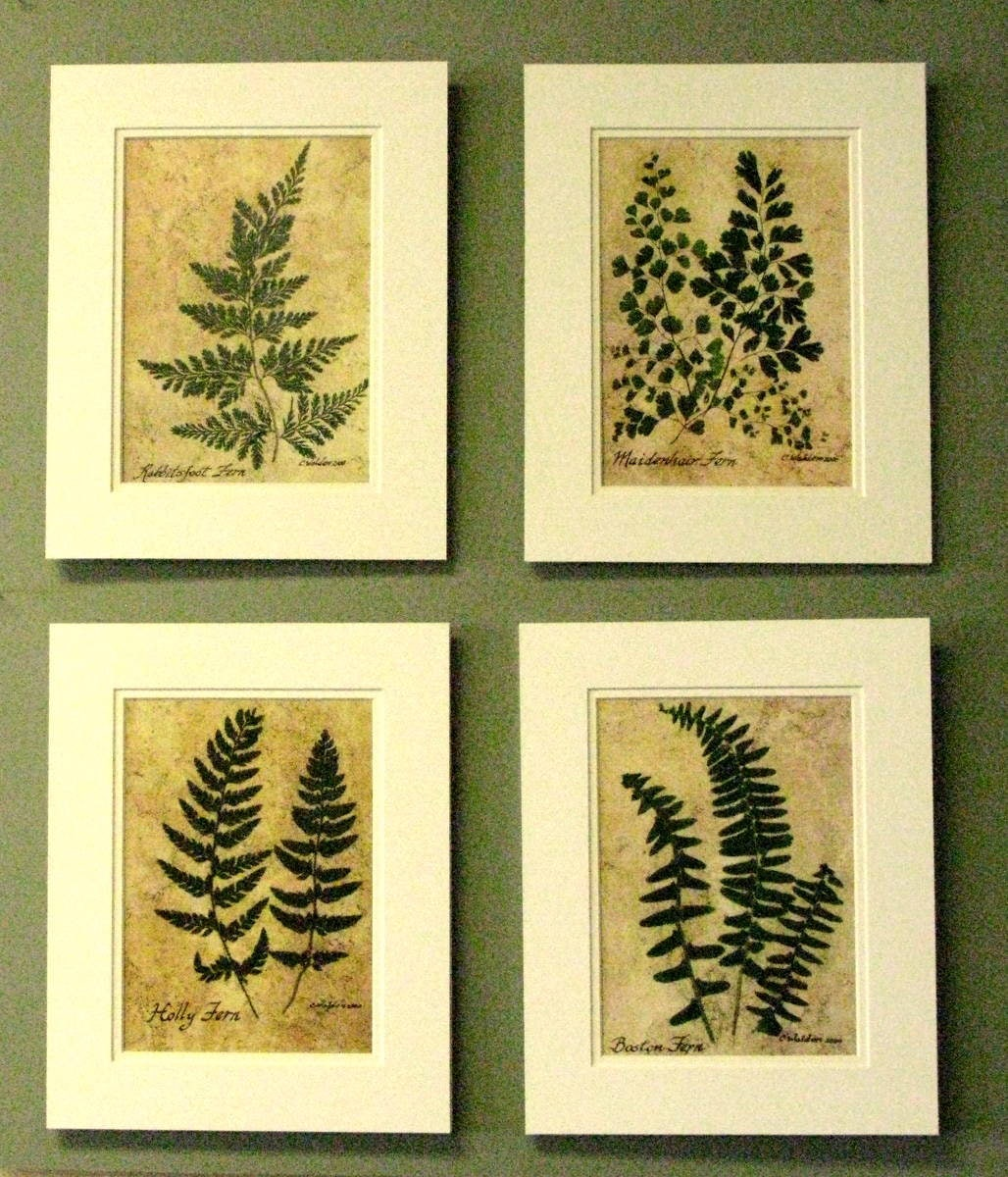 Famous Fern Wall Art Collection - All About Wallart - adelgazare.info