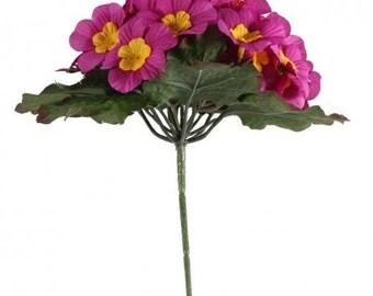 Primula Bush 25 Flowers 21cm/8 Inches Pink