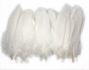 6-8 inches White Craft Natural Goose Feathers