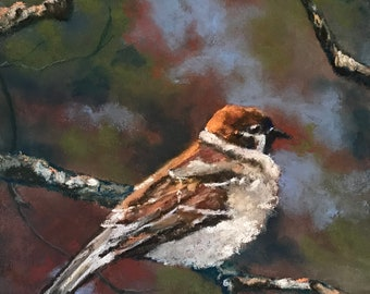 Pastel Painting of Sparrow in the Trees painted by Wendy Johnston