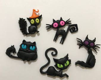 Creeped Out Cats Magnets / Set of Five Cat Magnets / Animal Magnets