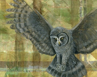 Great Gray Owl Painting, Owl Art Print, Bird Painting, Bird Art, Wildlife Painting, Owl Artwork, Owl Wall Art, Animal Art Print Owl Painting
