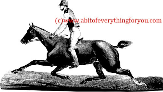 1800s man riding horse vintage printable art print png clipart equestrian animal art digital download image graphics country home decor