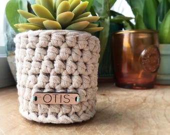 Crocheted Planter Cozy / Airplants, Succulents, Catch-all, Basket, Shabby Chic, Farmhouse