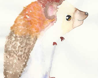 Hedgehog adorable greeting cards for any occasion 6 x 4 includes envelopes (Pack of 5)