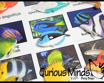 Montessori Animal Match - Miniature Tropical Fish with Matching Cards - 2 Part Cards.  Montessori learning toy, language materials